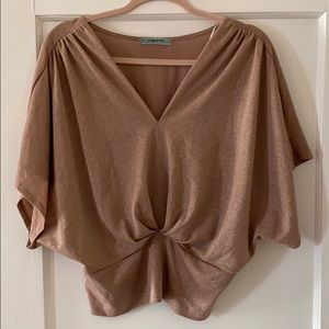 Pleione Dress Blouse Sz L